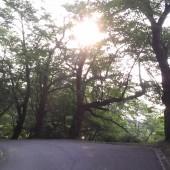 早朝ランの坂道ダッシュ(もどき)は老体にはこたえます・・・